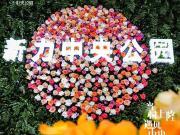 新力中央公园示范区盛装启幕,轰动全城,昆山从未如此惊艳!