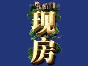 买放心更要买低价 哈尔滨在售现房单价低至8千元