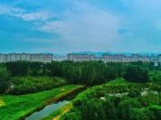 预见世界级桃花源 ——都丽华府万亩森林公园养生大宅
