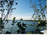 金地·长湖湾|湖居生活里的诗情画意