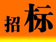 河源霸王花东城国际商住小区园林设计工程全球公开招标
