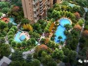 清凉一夏 橘洲一号泳池开池啦!