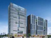 联泰新城中心项目拟建4幢8-19层商务办公楼 工地实景邀赏