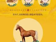 紫枫郡∣车顶配and房毛坯,圈内潜规则大揭秘!