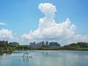 深化合作  发展渔业产业 脚踏实地打造新型防城港