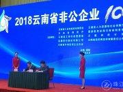 曲靖11家企业入围2018云南省非公企业100强