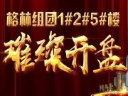 置业城央 当红不让 东关国际格林组团压轴楼座12月2日开盘