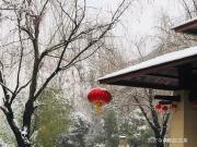 东方今典 | 雪后的家园,你知道有多美吗?