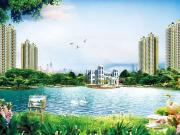 染绿百亩园 浸翠央湖水