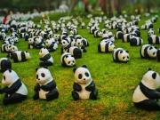 激萌新体验!熊猫宝宝乐游岚庭购房节