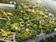 置业冬奥文化公园旁  给你一个森林般的家