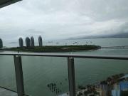 置业顾问徐文龙发布了一条凤凰岛的抖房