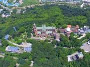 上海楼市购房意愿回升 北上广深一线城市扛旗 房价再起波澜