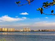 2019晋阳湖片区大爆发,你可能再也高攀不起了……