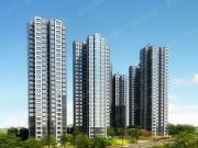 大理十畝项目新春贺礼观海公寓、洋房温情上市