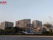 广州公寓成交量同比翻倍,预计势头将继续维持
