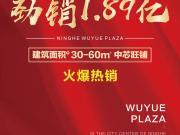 首开告罄劲销1.89亿  宁河吾悦广场红动全城