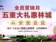 恒大中央公园: 全员营销月 五重大礼惠林城