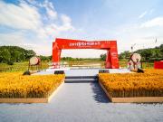 用来自世界的欢乐重塑乡村,融创东南签约日本MOKUMOKU
