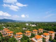 宝安兴隆椰林湾在售:LOFT和商铺 均价22000元/平米
