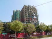 重磅!惠州金宝东鑫广场747套物业被拍卖,起拍价4.8亿元!