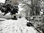 凛冬已至,雪天出行也不难的交通利好盘都在这里了