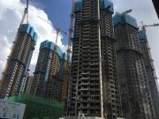 深圳首宗现售住宅地即将面市 龙华金茂府开盘价格或破10万