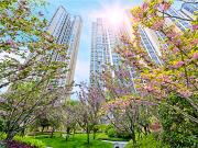 疫情下的春天 搜狐焦点实探长沙河西在售公园房、湖景房