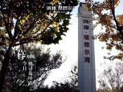 理想湾 最后100套房源即将售罄 涿州性价比最高楼盘