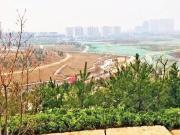 西安城南将添5236亩大湿地公园 沿线河景房8000起手慢无