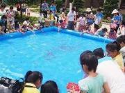 邀您嗨玩过足瘾,龙城水景苑首届国际童趣嘉年华活动五一趣味开启