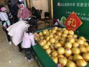 """暖冬""""柚""""礼,致谢全城!致远·翡翠传奇10000斤柚子全城送"""