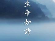 中国铁建地产(贵州)2020年品牌战略发布会风雅落幕
