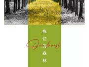 绿意漾心,融创哈尔滨丛林主题之安康景不雅体系解读