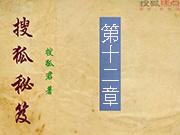 搜狐秘笈:第十二章