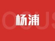 提前爆料!杨浦9大新盘待入市,将供应4000余套房源