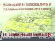 惊喜!朱家角三年内将被打造成又一个4A级景区