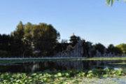 冬日安家 置业公园地产畅享鲜氧生活