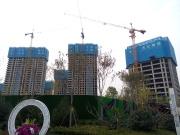 中国房价涨还是跌? 诺贝尔经济学家席勒:不好说