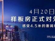 美集•鑫桥国际示范体验区华丽绽放