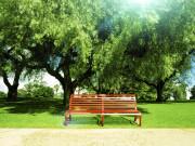 官宣!至2035年市民步行10分钟可达社区公园