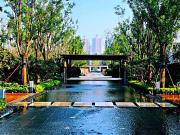 【众成嘉园】美丽家园,幸福生活 贺新中国成立70周年摄影比赛