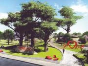 成都首个市级古树公园即将开建!与国宝大熊猫相关联