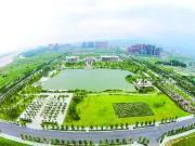 这个片区又出利好消息! 高明西江新城拟挖新湖