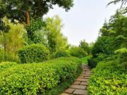 中国亭园造林绿化 周边这几楼盘最受益