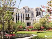 大华斐勒公园,加推叠墅,精装洋房可直接认购,内附一房一价表