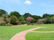 阳春三月淮安这几座公园要火!5字头就能安家公园旁