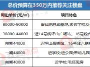 先别急着逃离深圳 总价350万内或还有机会上车南山新盘