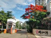 信基颐和湾:一期跃层及别墅在售 8033元/平起