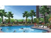 阳光城项目在售:平层公寓户型 总价45万/套起售